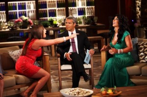 real-housewives-of-new-jersey-season-4-gallery-reunion-preview-24